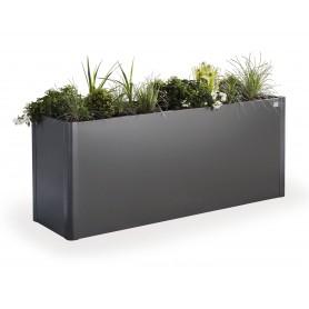 Pflanzenbehälter Belvedere 201x53
